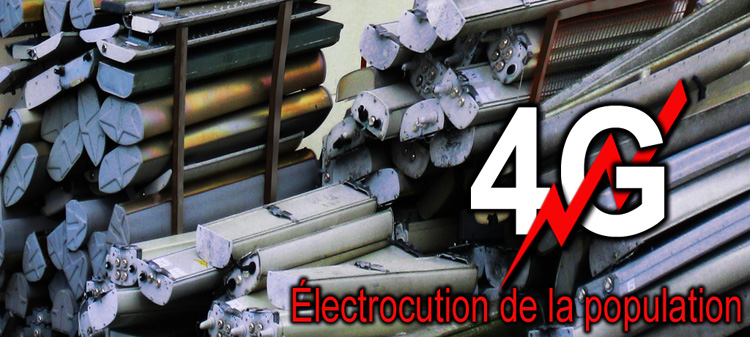 4G_electrocution_population_flyer_750_IMG_0042