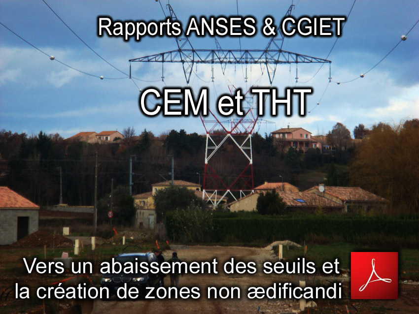 ANSES_CGIET_THT_CEM_BF_Rapports_11_01_2011