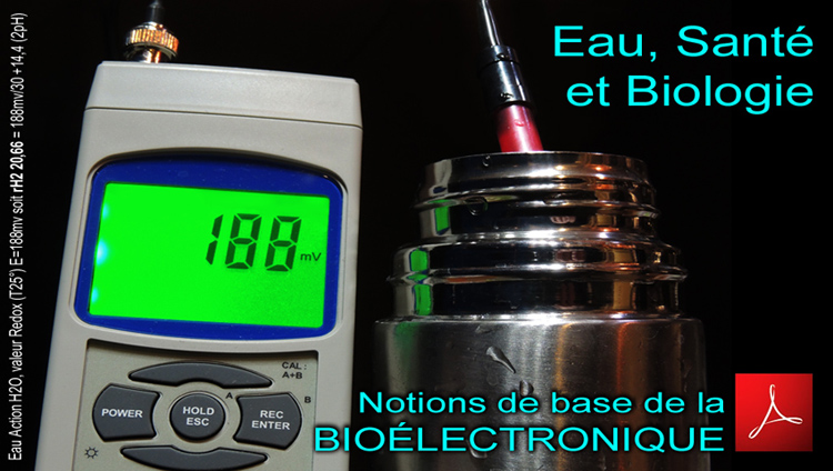BioElectronique_Notions_de_bases_Memoire_Beatrice_Mercier_750_DSCN9283