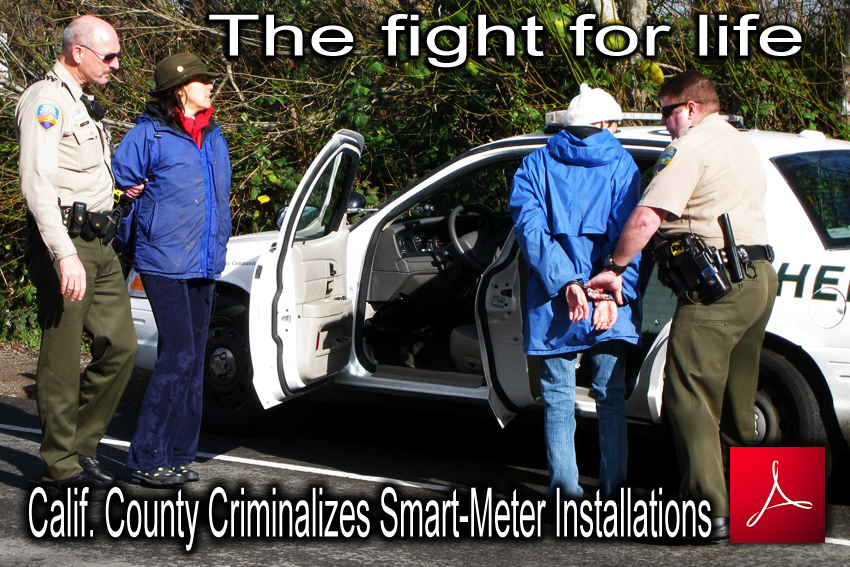 Calif_County_Criminalizes_Smart_Meter_Installations_news_TNYT_05_01_2010