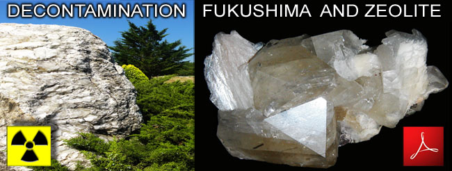 Decontamination_Fukushima_and_Zeolite_2011_news
