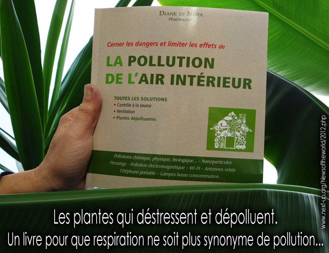 Diane_Di_Nota_La_pollution_de_l_air_interieur_Le_Courrier_du_Livre_Flyer_News