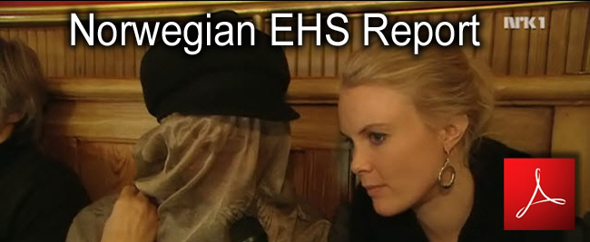 EHS_Debate_Norvegien_Parliament_Report_NRK_15_01_2011_news