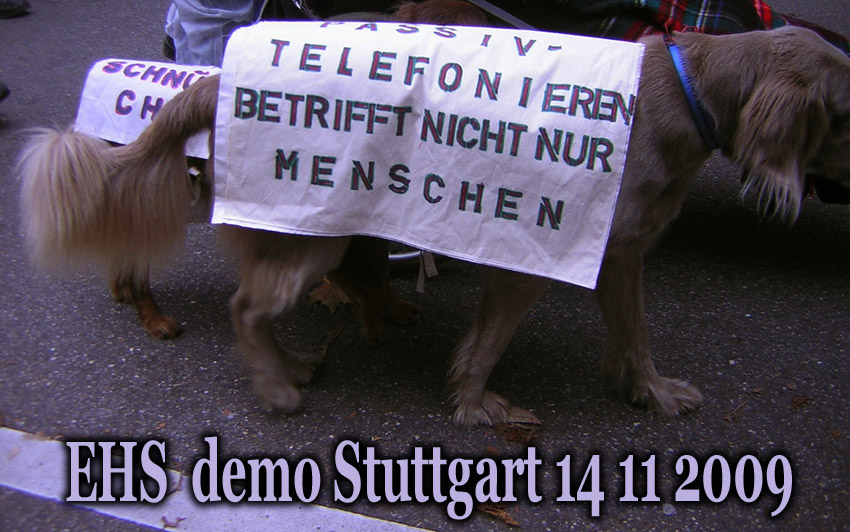 EHS_Demo_in_Stuttgart_14_11_2009_28