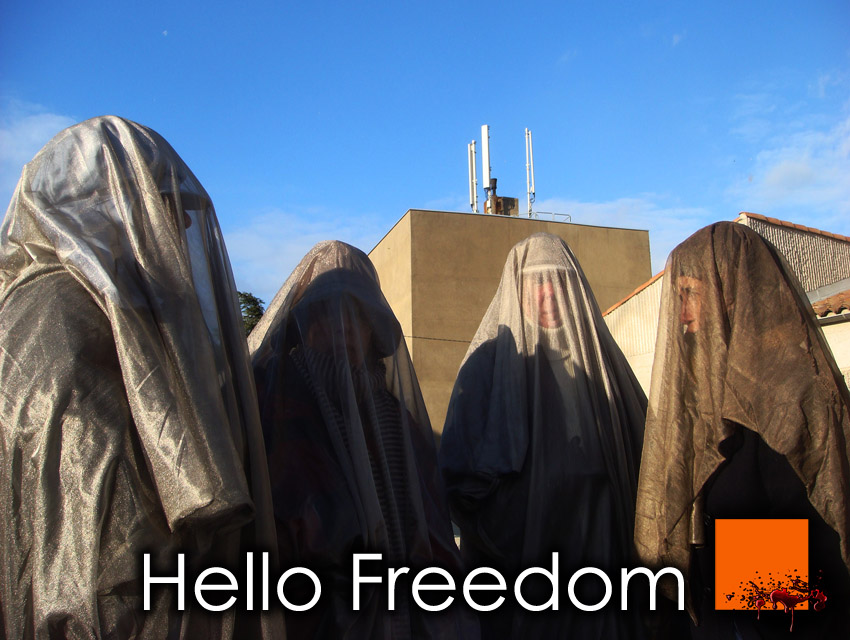 EHS_Hello_Freedom_Veil_Voile_Protection_CEM_EMF_France