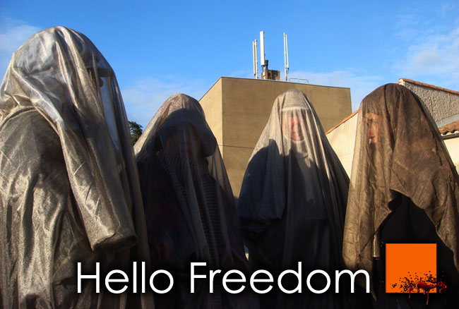 EHS_Hello_Freedom_Veil_Voile_Protection_CEM_EMF_France_News