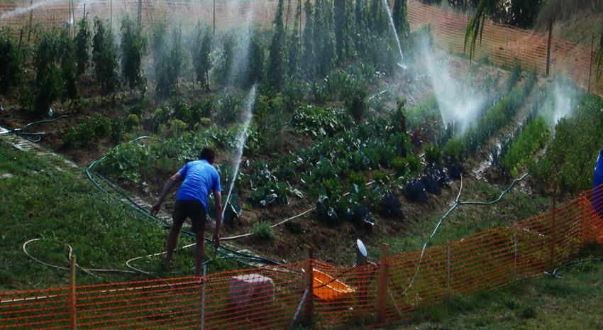 Ehs zone refuge france for Le jardin potager bio