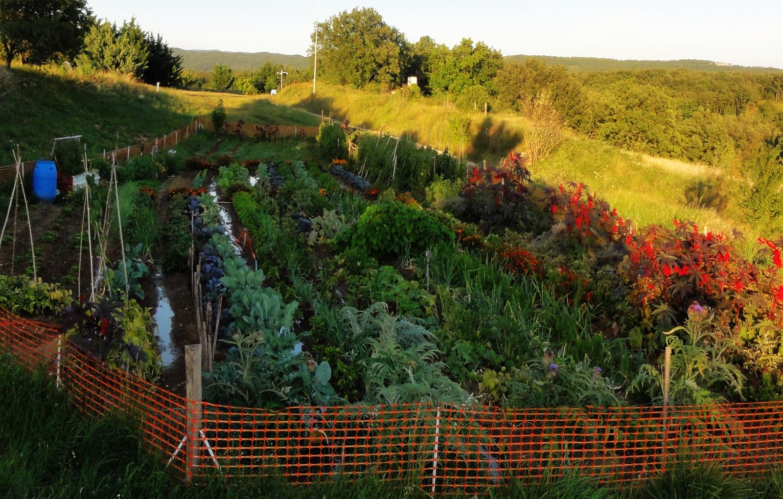Tyrannie en france contre les ehs lectro hypersensible for Le jardin potager bio