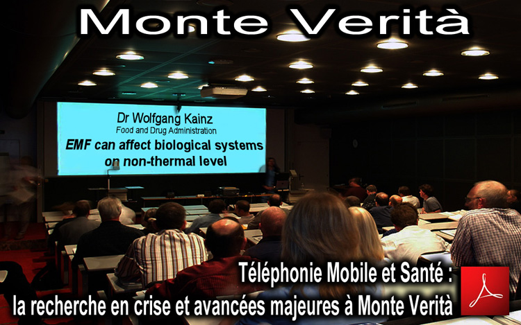 EMF_Monte_Verita_meeting_Flyer_News_10_2012