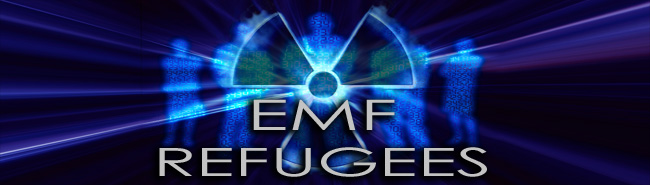 EMF_Refugee_Radiation_650