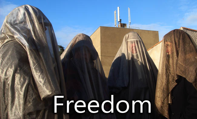 EMF_protection_Veil_Freedom_27_11_2010_news