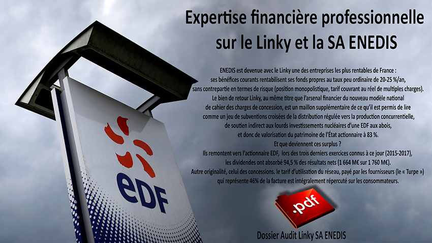 Expertise_financiere_professionnelle_Linky_SA_ENEDIS_01_2019_850.jpg