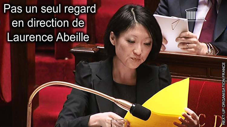 Fleur_Pellerin_intervention_Laurence_Abeille_Assemblee_Nationale_PPL_ondes_electromagnetiques_750