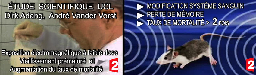 France2_Etude_scientifique_UCL_Dirk_Adang_Ecxposition_Rats_aux_CEM_850 2