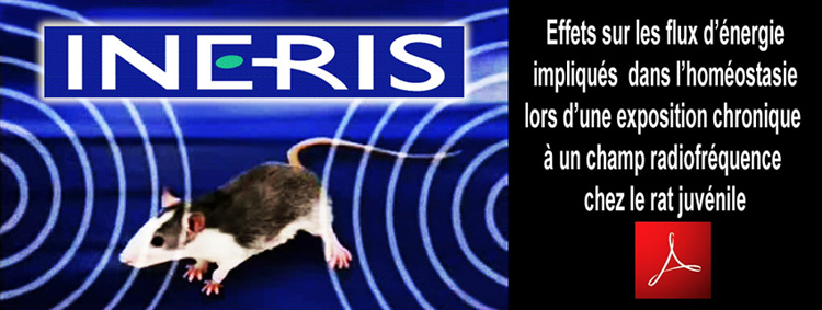 INERIS_Etude_Scientifique_CEM_RF_Flyer_750_version_Fr