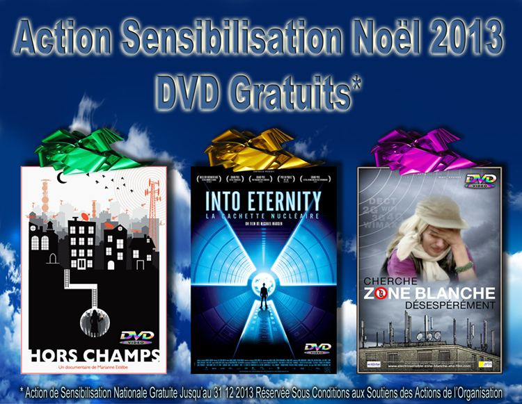 Action_Gratuite_Noel_2013_DVD_Sensibilisation_flyer_750.jpg