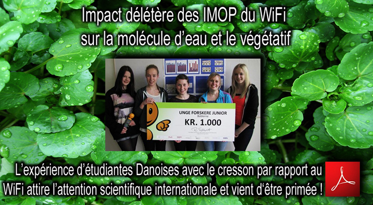 Impact_irradiations_Micro_Ondes_WiFi_Cresson_Dk_Flyer_750_24_05_2013