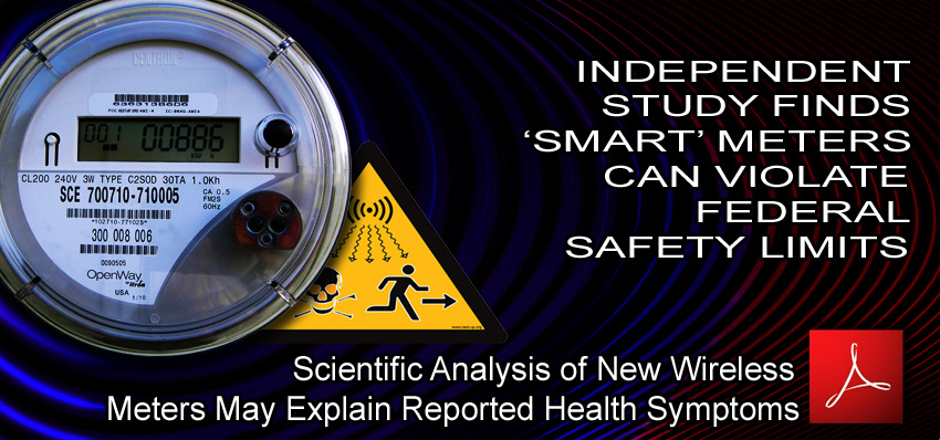 Independent_Study_Finds_Smart_Meter_Can_Violate_Federal_Safety_Limits_03_02_2011_news