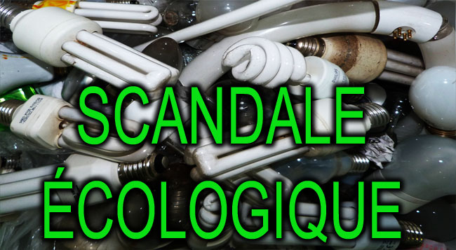 LFC_Scandale_Ecologique_news