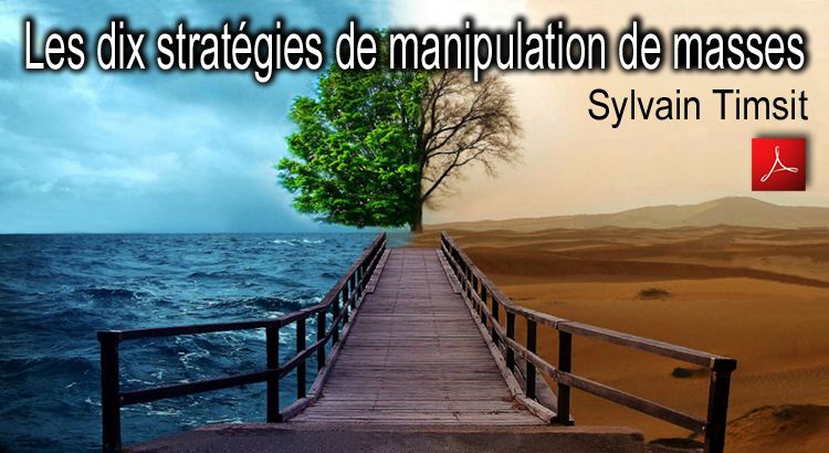 Les_dix_strategies_de_manipulation_de_masses_Sylvain_Timsit_flyer_750