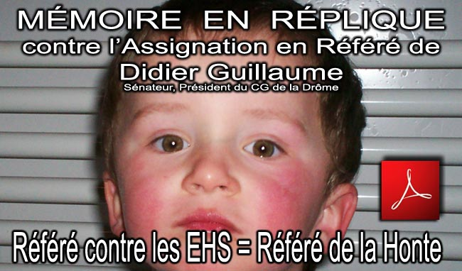 Memoire_en_Replique_Refere_Contre_les_EHS_20_07_2010 news