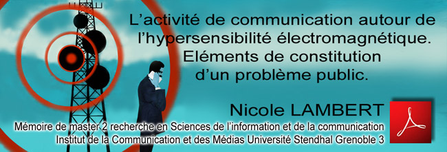 Nicole_LAMBERT_Memoire_master_Communication_EHS_Institut_Communication_Medias_Universite_Stendhal_Grenoble_3_Flyer_News_04_04_2012