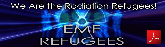 Paul_Doyon_We_Are_the_Radiation_Refugees_30_03_2011