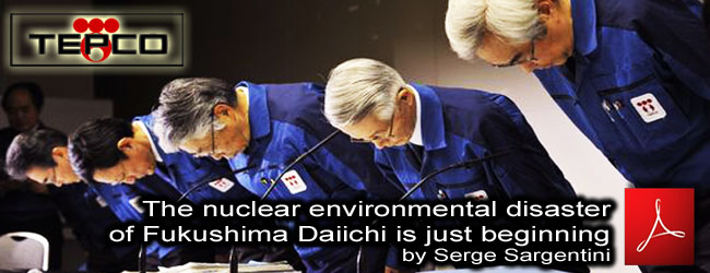 Serge_Sargentini_The_nuclear_environmental_disaster_of_Fukushima_Daiichi_is_just_beginning_02_05_2011_news