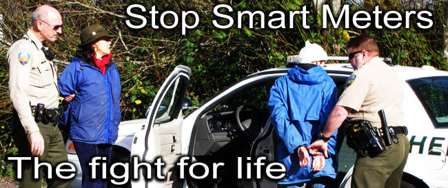 Stop_Smart_Meter_The_fight_for_life