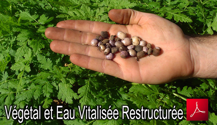 Vegetal_Germination_et_Eau_Vitalisee_Restructuree_Flyer_750_10_06_2013