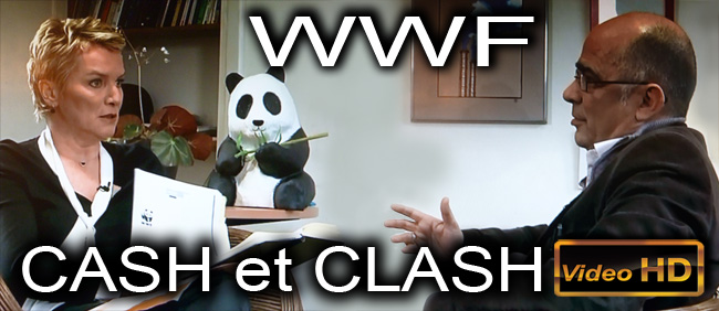 WWF_Cash_et_Clash_Flyer_News