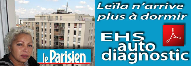le_Parisien_Leila_n_arrive_plus_a_dormir_17_07_2011_news